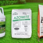 best lawn fertilizer reviews