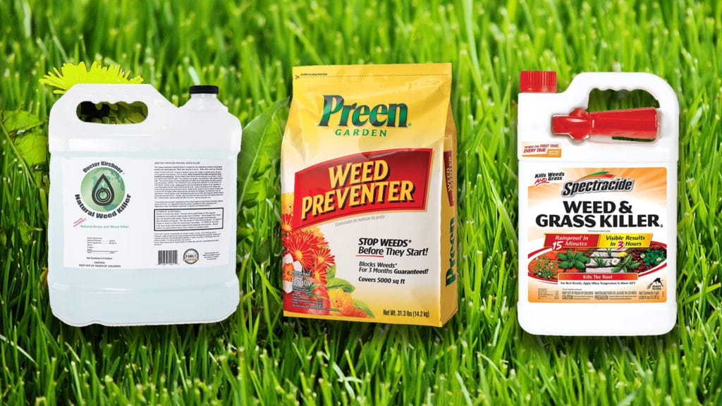 best lawn weed killer reviews