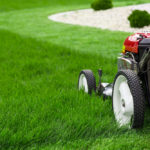 one of the lawn mower types available