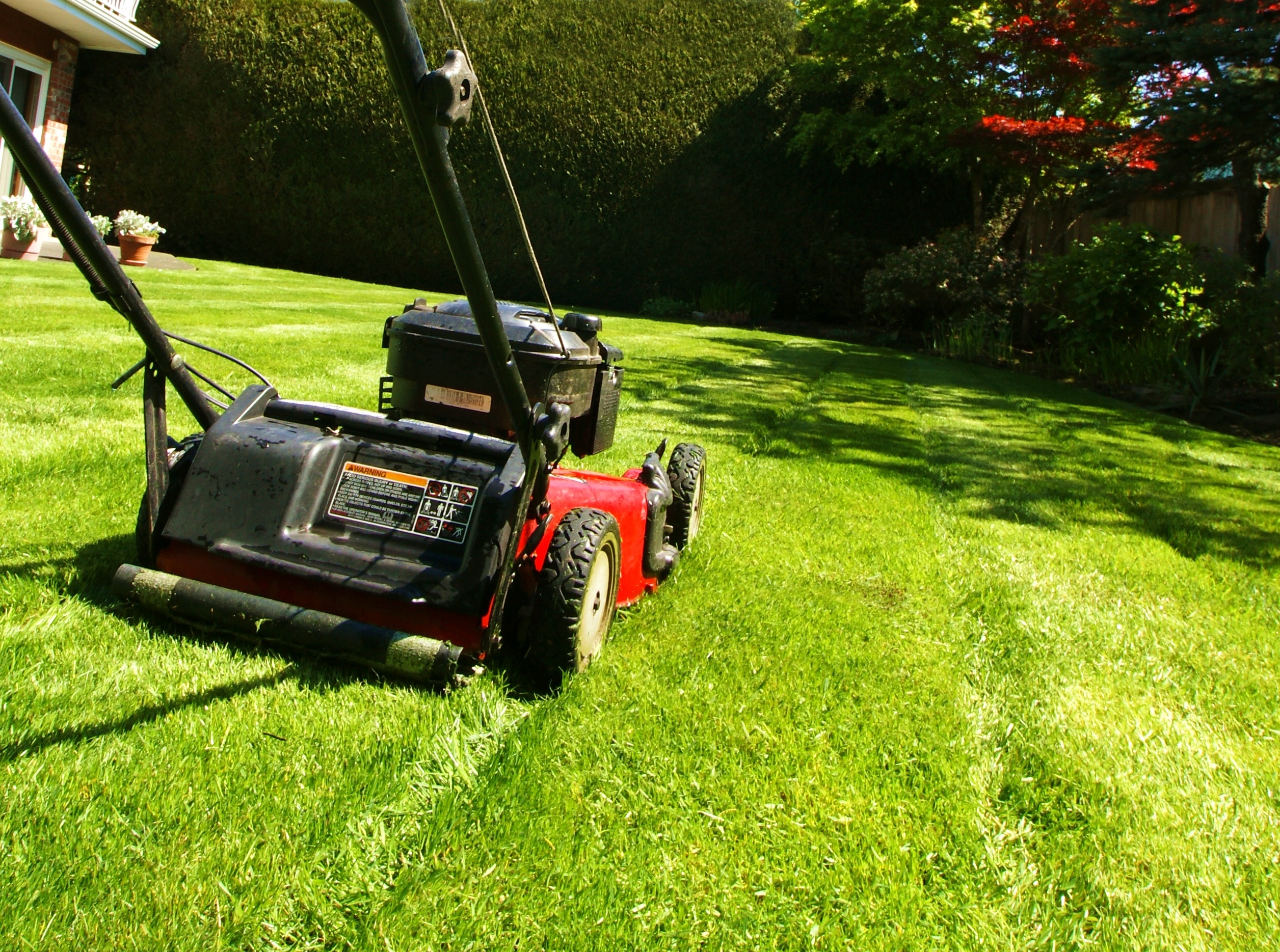 beginners guide to mowing your lawn by homegearexpert