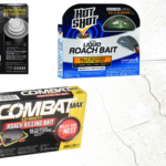 best roach killer according to pet control professionals